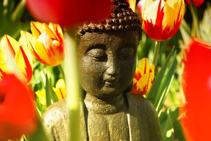 buddha, path to enlightenment