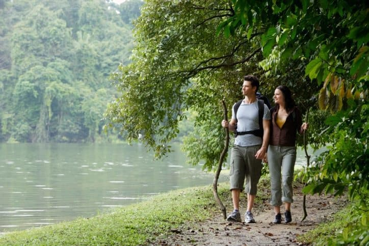 healing forests, forest bathing, shinrin yoku, forest therapy, National Great Outdoors Month, mindful living, ourmln, mindful living network, kathleen hall