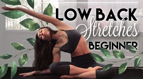 Yoga with Bird - Yoga For Lower Back Pain